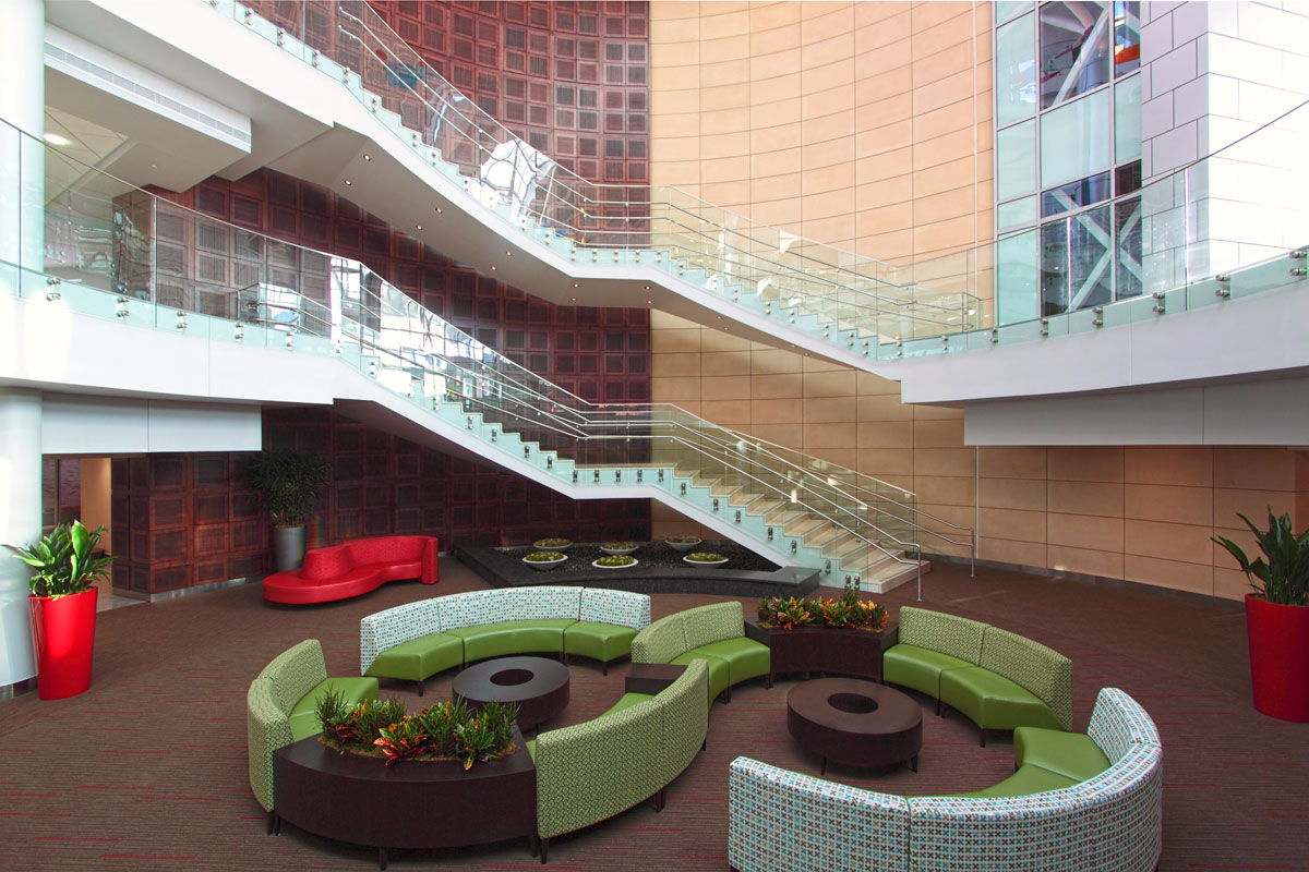 Formable alucobond acm clads whimsical children s atrium for Atrium design and decoration